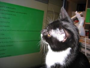 Linuxcat